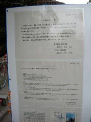 Dscn6129_320
